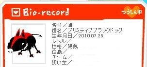 kai_bio.jpg