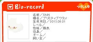 shin_bio.jpg